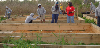 Community gardeners and our fellow non-profits in need of volunteers to support their day-to-day operations of special projects.